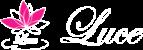 名古屋|ルーチェ【Luce】アイブロウデザイン・アイラッシュリフト・ブラジリアンワックス・ボディカラーリング
